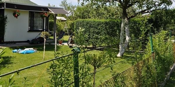 Działkowi złodzieje w rękach policji. Jeden kradł wodomierze i krany drugi drzewka ozdobne.